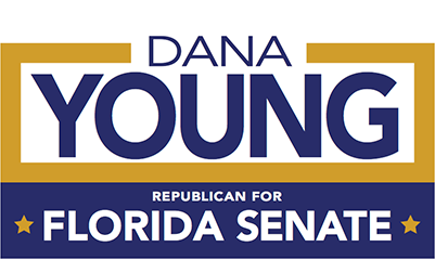 Dana Young For State Senate